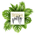 Summer tropical leaf background with exotic palm leaves. Party flyer template. Handwriting lettering. Vector
