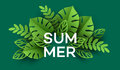 Summer Tropical Leaf. Paper cut style. Vector illustration Royalty Free Stock Photo
