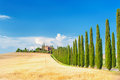 Summer Tuscan landscape, green field and blue sky Royalty Free Stock Photo