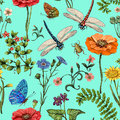 Summer vector seamless pattern. Botanical wallpaper. Plants, insects, flowers in vintage style. Butterflies, dragonflies Royalty Free Stock Photo