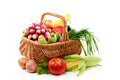 Summer vegetables in basket. Royalty Free Stock Photo