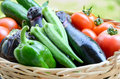Summer vegetables in basket Royalty Free Stock Photo