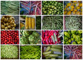 Summer Vegetables Royalty Free Stock Photo