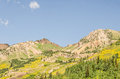 Summer in the Wasatch Mountains Royalty Free Stock Photo
