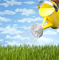 Summer Watering Can Grass Royalty Free Stock Photo
