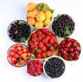 Summer wealth. Variety of berries. Stock Image