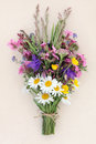 Summer Wild Flower Posy Royalty Free Stock Photo