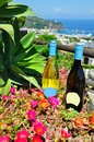 Summer wine on the sea italy red and white at colours amalfi coast Royalty Free Stock Photo