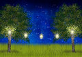Summernight with lanterns in the garden trees Royalty Free Stock Photo