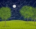 Summernight moonlight Royalty Free Stock Photo