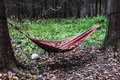 Summers end red hammock in autumn forest Stock Photo