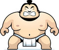 Sumo Wrestler Royalty Free Stock Photos