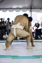 Sumo Wrestlers 16 Royalty Free Stock Photo