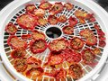 Sun dried tomatoes food dehydrator and a Royalty Free Stock Photography