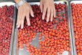 Sun drying jujube the exposure of the flip accelerate Royalty Free Stock Photography
