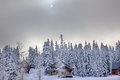 Sun fog snow covered evergreens snoqualme pass washington trees wood buildings on mountain at Stock Images