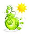 Sun and green vegetation Royalty Free Stock Photo