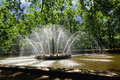 Sun named fountain Peterhof Royalty Free Stock Photo
