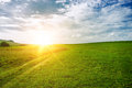 Sun near the horizon and green field of grass Royalty Free Stock Images