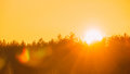 Sun Over Horizon Woods Or Forest With Orange Sunset Sky. Natural Colors Royalty Free Stock Photo