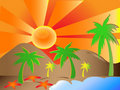 Sun Palms Background Royalty Free Stock Image