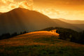 Sun rays over the misty hills and light in mountain valley Stock Images