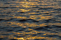 Sun reflection on water Royalty Free Stock Photo