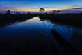 Sun rises as dawn breaks on the marsh botswana africa in chobe national park Stock Photography
