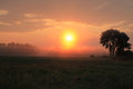 Sun rising over the field Royalty Free Stock Photo
