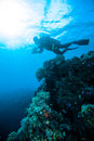 Sun shine scuba diving diver kapoposang sulawesi indonesia underwater life Royalty Free Stock Images