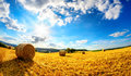 The sun shining upon rural landscape Royalty Free Stock Photo