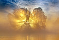 Sun sunrise at the lake a misty morning Royalty Free Stock Photography