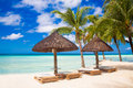 Sun umbrellas and beach beds under the palm trees on tropical beach Royalty Free Stock Photo