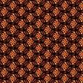 Sun Web Afro Pattern