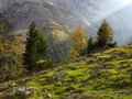 Sunbeam in harsh mountain valley by fall colors Royalty Free Stock Photo