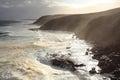 Foamy sea at rocky coast with sunshine Royalty Free Stock Photo