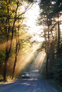 Sunbeams in the forest and car Royalty Free Stock Photo