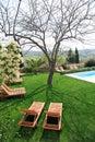 Sunbeds ao lado de uma piscina no jardim Fotografia de Stock Royalty Free
