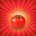 Sunburst Background With Red Tomato Stock Images