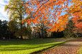 Sunday afternoon in autumn a quite park zurich on a sunny afternoos its s late the winter is coming soon Royalty Free Stock Photos