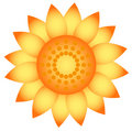 Sunflower. Royalty Free Stock Photo