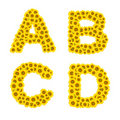Sunflower alphabet
