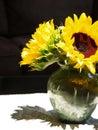 Sunflower Arrangement Royalty Free Stock Photo