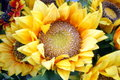 Sunflower artificial very realistic very beautiful Royalty Free Stock Images