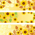 Sunflower Banners Set Royalty Free Stock Images