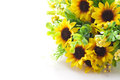 Sunflower bouquet Stock Images