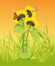 Sunflower with butterfly on the yellow background Royalty Free Stock Images