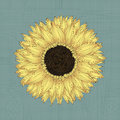Sunflower drawing grunge background sketch Royalty Free Stock Image