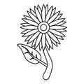 Sunflower flora leaves icon thin line