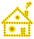 Sunflower home image isolate on white  background Stock Photo